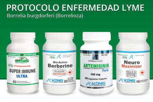 Protocolo enfermedad Lyme