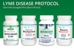 Lyme Disease Protocol